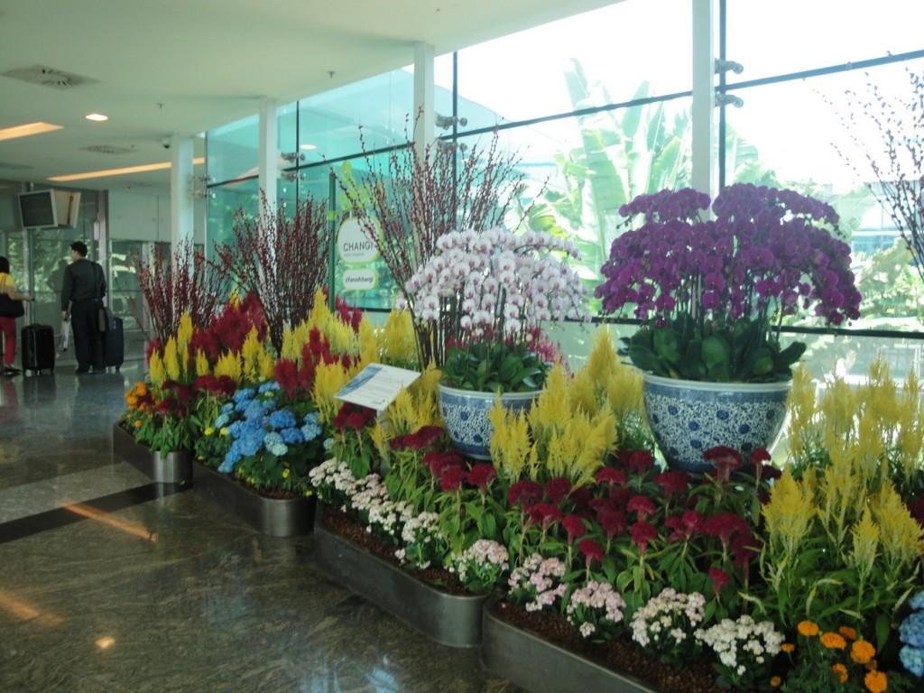 airport Singapure