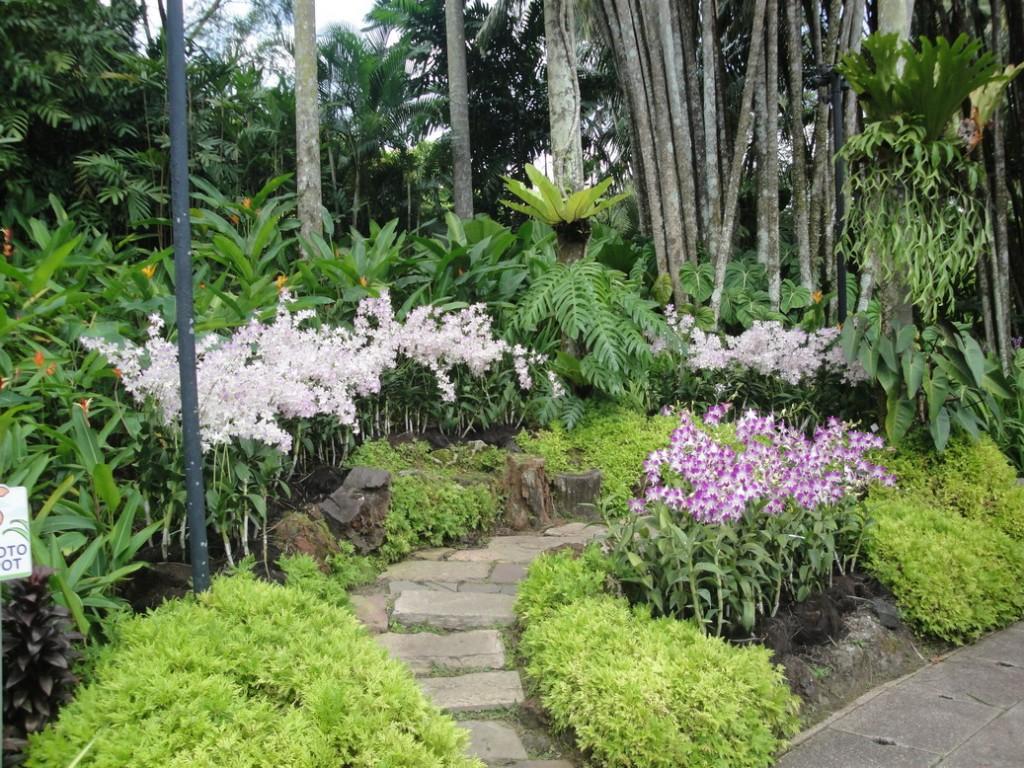Сад Орхидей В Сигапуре, Сад Орхидей
