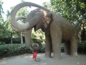 Слон в парке Цитадели