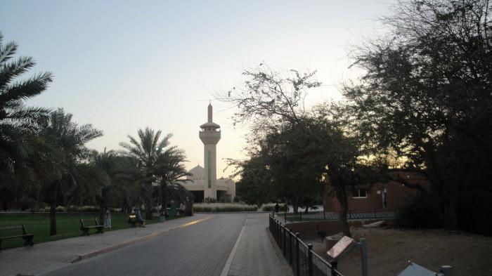 Зоопарк в Аль Айне
