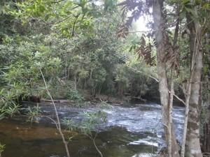 Река Тысяча Лингамов