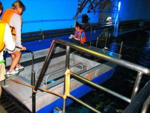 Лодка в Океанариуме