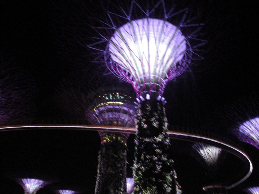 Шоу в Gardens by the Bay
