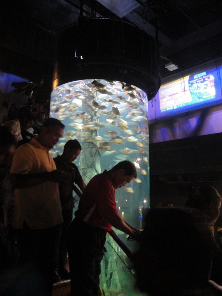 Океанариум Куала Лумпур