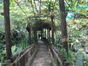 Парк бабочек Куала Лумпур