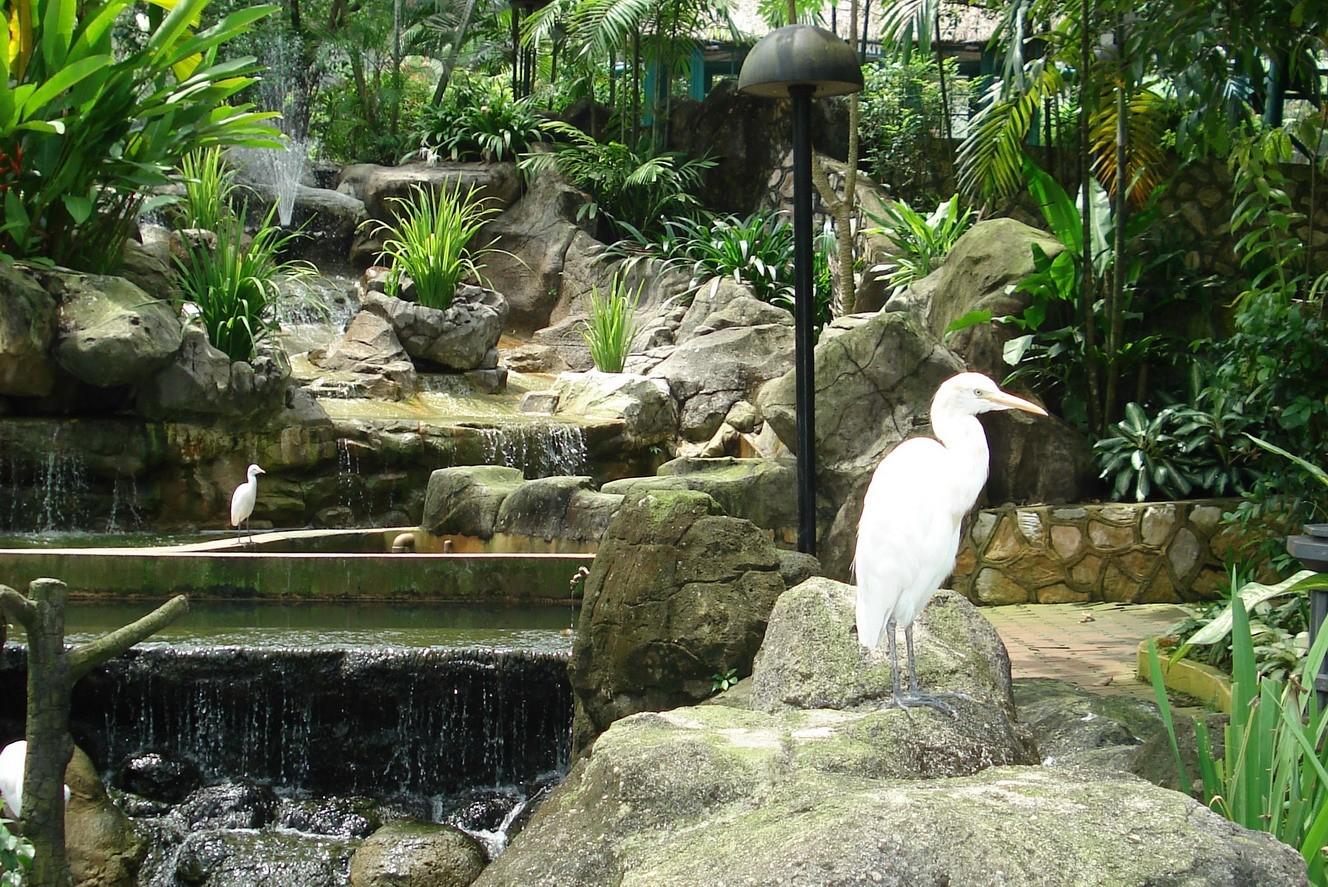 Озерный парк Куала Лумпура.