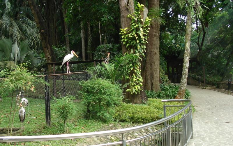 Парк Птиц Куала Лумпур