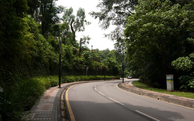 Дорога к парку птиц