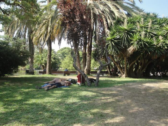 В парке Цитадели