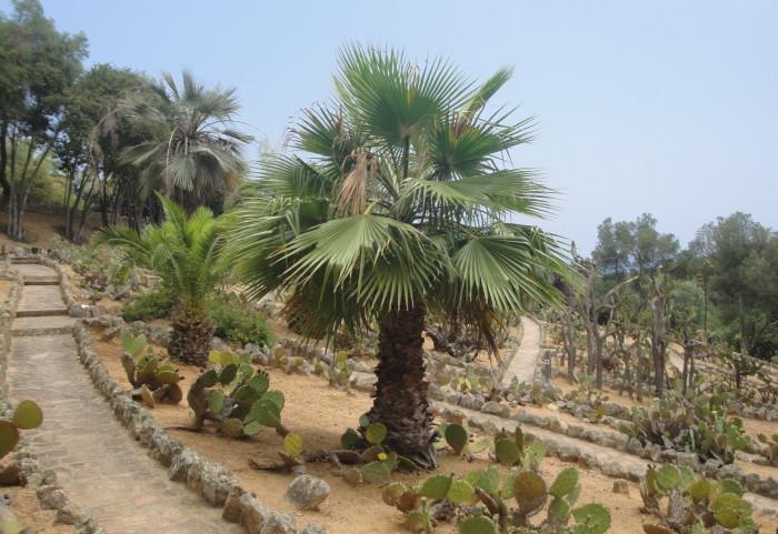Ботанический парк Пинья де Роса