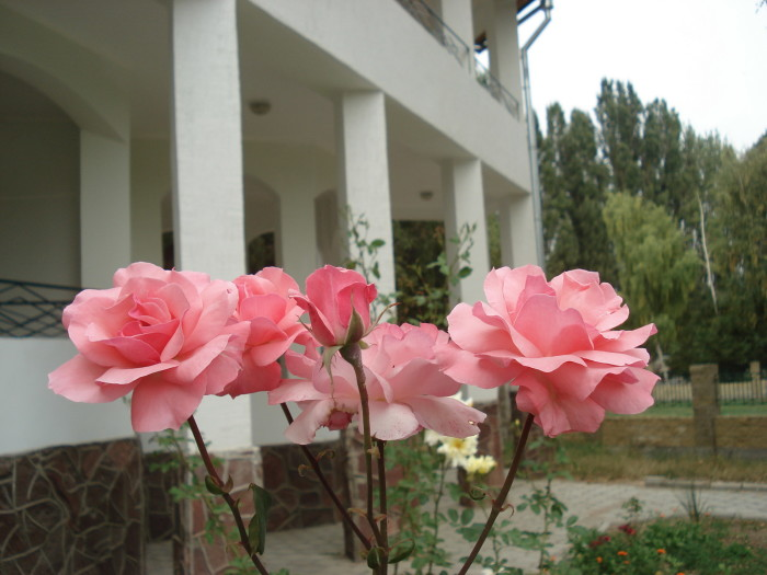 Отель на Иссык-Куле
