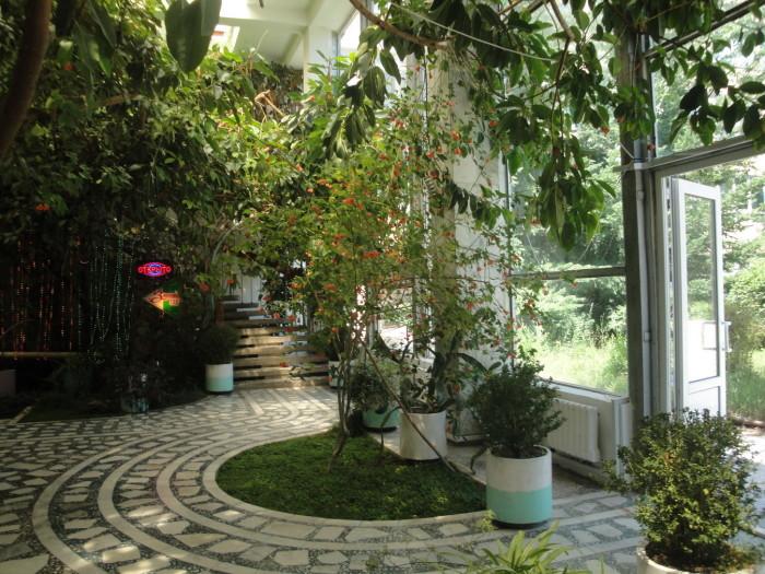 Зимний сад в санатории Киргизское взморье