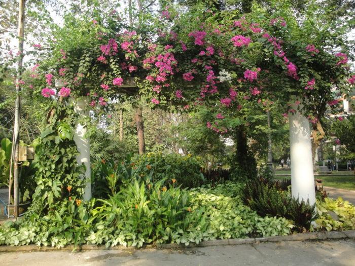 Зоопарк Сайгона